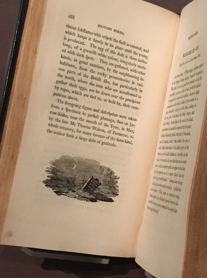 "Remember ""Bewick's History of British Birds,"" the book Jane curled up with in the window seat? The family owned the book. It was a favorite, and the museum had their copy on display to the page little Jane describes."